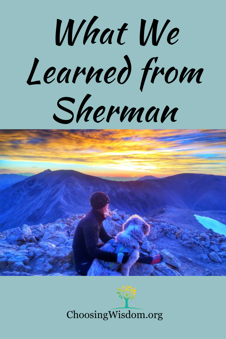 What We Learned From Sherman Choosing Wisdom
